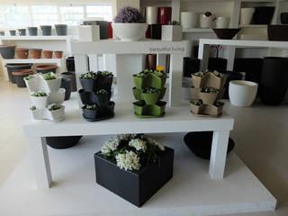 Showroom:   por Melo & Santos, Lda