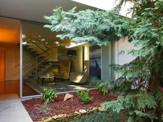 Susana Camelo Modern Corridor, Hallway and Staircase Green
