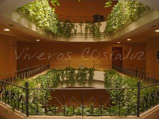 - Hoteles de estilo colonial de Costaluz decoration&garden Colonial