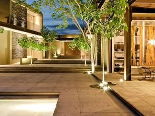 Jardines de estilo  de PLUS Arquitectura y Diseño Ltda., Moderno