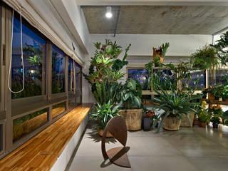 Jardim Interno: Jardins de inverno  por Piratininga Arquitetos Associados,Minimalista
