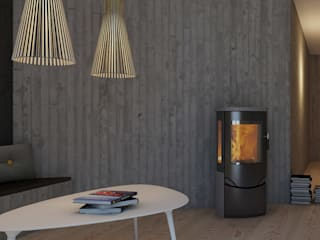Pro Serie Speicherofen Bernhard Schleicher e.K. Living roomFireplaces & accessories