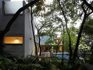 CASA TLÁLOC: Jardines de estilo  por Landa Suberville
