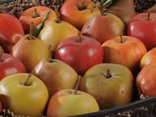Frutta in cera di Viviano Biagioni Classico
