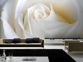 Papel de Parede salas, quartos, etc por CreativeArq Moderno Papel