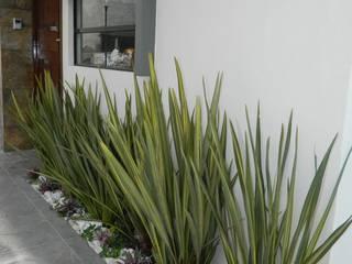 Jardines modernos: Ideas, imágenes y decoración de ECNarquitectura Moderno