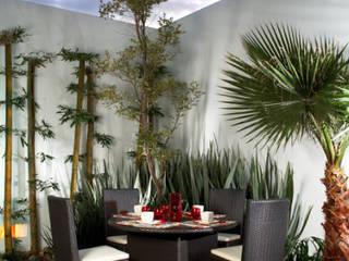 arketipo-taller de arquitectura Modern terrace