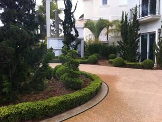 Classic style garden by REJANE HEIDEN PAISAGISMO Classic