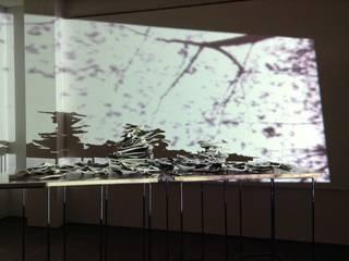 Solo exhibition-A Meteor Shower-(BITOHA/Karuizawa)2015: Ricca OKANOが手掛けた現代のです。,モダン