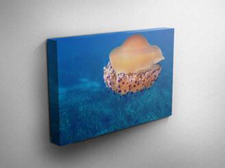 SEA ARTが手掛けた地中海, 地中海