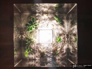 """Pil Tasarım Mimarlik + Peyzaj Mimarligi + Ic Mimarlik – """"Işığını Yansıt"""" Teraryum Aydınlatma Ürünleri Serisi: modern tarz , Modern"""