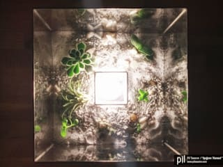 Pil Tasarım Mimarlik + Peyzaj Mimarligi + Ic Mimarlik – Teraryum Aydınlatma: modern tarz Oturma Odası