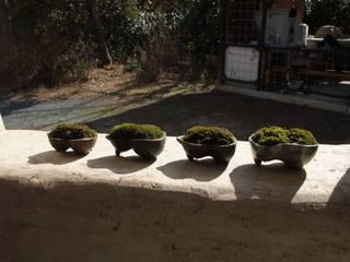 ひょうたん型苔鉢: 里窯【藤原 里子】が手掛けたです。