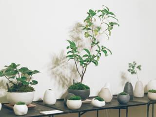 地器と金魚葉椿白侘助: 陶刻家 由上恒美                                          Ceramic Sculptor  tsunemi yukami  が手掛けたです。