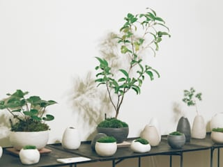 de estilo  por 陶刻家 由上恒美                                          Ceramic Sculptor  tsunemi yukami