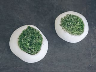 雲苔: 陶刻家 由上恒美                                          Ceramic Sculptor  tsunemi yukami  が手掛けたです。