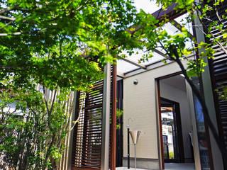 にわいろSTYLEの庭(2) 2015~ にわいろSTYLE オリジナルな 庭