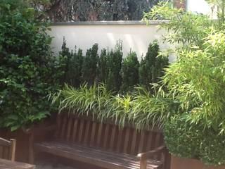Terrazzi attico in centro a Bologna Giardino moderno di I Giardini di Anna Moderno