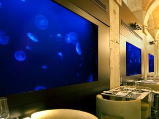 ADn jellyfish aquariums at Largo restaurant in Lisbon Espaços de restauração modernos por ADn Aquarium Design Moderno
