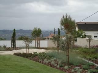 Jardim EJ Jardins minimalistas por RAQUEL FRIAS - ARQUITECTURA PAISAGISTA Minimalista
