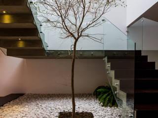 Arbol Pasillos, vestíbulos y escaleras modernos de aaestudio Moderno