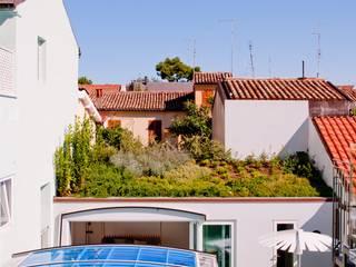 Jardines de estilo  de Studio Olmeda Arch. Marco Amedeo,
