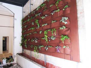 Jardín Vertical Casas de estilo moderno de Aida Lopez Paisajista Moderno