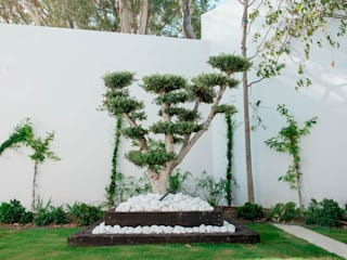 Beatrice Perlac - Adarve Jardines สวน