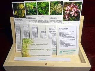 Wilde Duftpflanzen (Saatgut-Box): landhausstil Garten von Naturgarten-Samen aus Leipzig