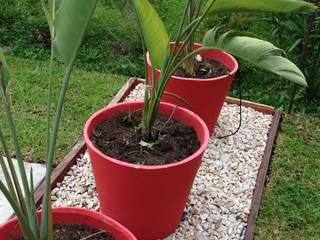 Jardines de estilo  de BAIRES GREEN