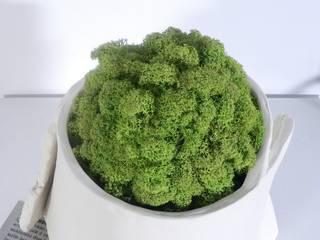 """Vaso """"Abbraccio"""" con sfera di licheni stabilizzati:  in stile  di Ceramica Artistica di Chiara Cantamessa"""