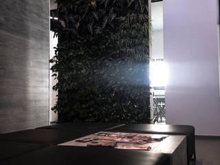 Scuola di Estetica Scuole moderne di Studio Batoni Moderno