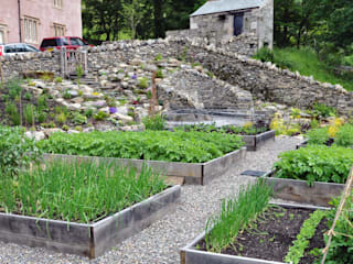 Kitchen garden in use - growing vegetables !:   by Buzy Lizzie