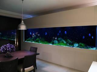 Serene Modern Interior モダンデザインの ダイニング の Aquarium Architecture モダン