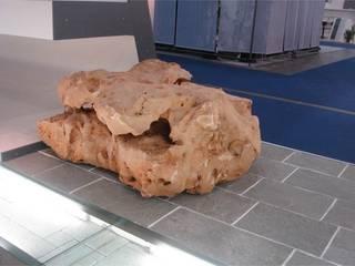 Kamienie ogrodowe od Kamienie Naturalne Chrobak Azjatycki