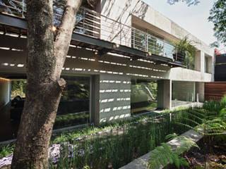 Minimalist style garden by grupoarquitectura Minimalist