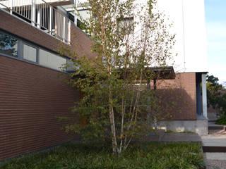 Jardín sin césped Jardines de estilo moderno de Irati Proyectos Moderno
