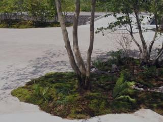表出する風景、潜在する時間: 空庭が手掛けた庭です。