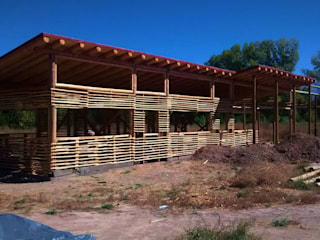 Country style house by bioma arquitectos asociados Country Bamboo Green