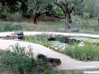 Garden with natural swimming pool Eclectic style gardens by Atelier Jardins do Sul Eclectic