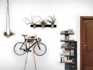Koridor & Tangga Modern Oleh PROJECT AB Modern