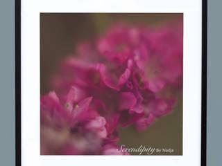 Flowers:   von Serendipity by Nadja