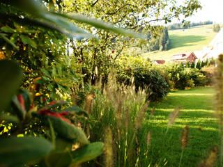 Lustenberger Schelling Landschaftsarchitektur 庭院