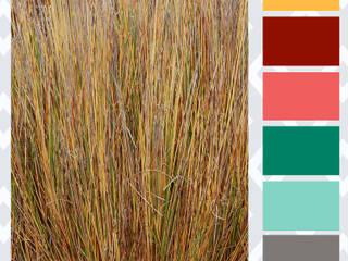 Carta de color Texturas - Trigo:  de estilo  por Divina Diseños Decoración