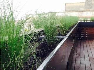 Singular Jardinería y Paisajismo: Terrazas de estilo  de Singular Jardinería y Paisajismo