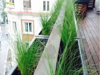 Balcon, Veranda & Terrasse modernes par Singular Jardinería y Paisajismo Moderne