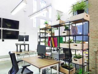 ShuttleCloud Offices Estudios y despachos de estilo minimalista de AMMPLIO ARQUITECTOS MADRID Minimalista