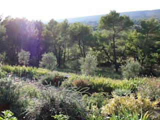 Vue restanque: Jardin de style  par I.D.O jardins