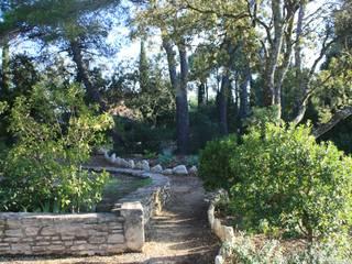 Cheminement avec bordure pierre: Jardin de style  par I.D.O jardins