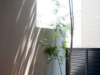 Sakurayama-Architect-Design 露臺